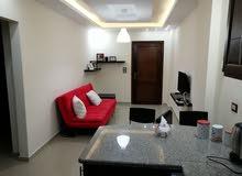 Best price 73 sqm apartment for rent in IrbidBehind Safeway