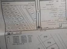 ارض ف موقع ممتاز وبسعر مناسب ولاية شناص / البليدة