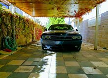 For sale Dodge Challenger car in Amman