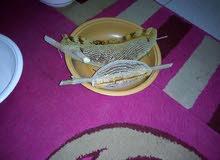 عسل طبيعي عماني