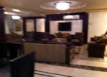 Dokki apartment is up for rent - Giza