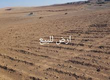 ارض فلاحية (بورية) صالحة الجميع انواع زراعة تنازل قابلة للملكية