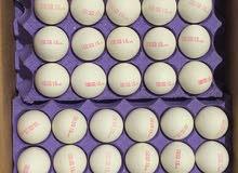 بيض اوكراني