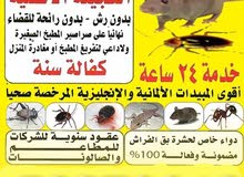 مكافحة جميع الحشرات والقوارض جميع مناطق الكويت أرخص الأسعار كفالة سنه علي الرش و