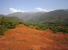 ارض للبيع بمنطقة سياحية