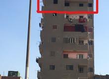 شارع 15 مايو الشارع الجديد امام مساكن المرأه المعيله