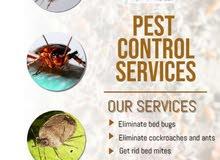 أسرع تنظيف بالسطنة ومكافحة الحشرات الفعال