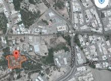 للبيع مزرعه بولاية صحار منطقة الوقيبه شرق سوق الجمعه 6425متر