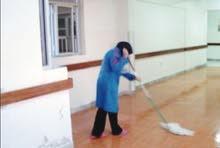عاملة نظافة باليوميه