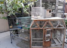 مجموعة اقفاص طيور للبيع