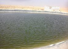 20فدان قابلة للتجزئة خالصه الاوراق كاملة المرافق (مياه ري)