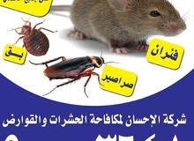 مكافحة حشرات وقوارض كفالة سنه علي جميع الأعمال