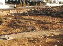 أرض للبيع في شفا بدران حي ابوخليفة بسعر مغري