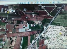 ارض في جنوب عمان الخضراء 4 دونم