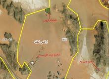 ارض استثمارية للبيع في وادي رم (15 دنم) - تبعد 800م عن مخيم بيت علي