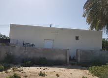 غرفتين و مطبخ وحمام الايجار في صحار two rooms with kitchen and toilet