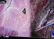 قطعة ارض استثماريه 715م للبيع - عمان - ام الدنانير