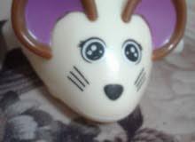 أرنب مستعمل للبيع