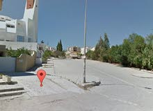 Terrain nu 500m2 jardin El manzeh 1