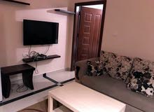 University Street apartment for rent with 1 rooms
