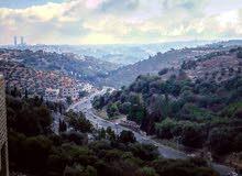 بدر الجديده اراضي غرب عمان
