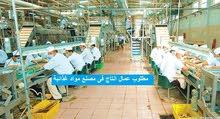 مطلوب عمال انتاج لمصنع