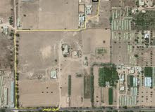 قطعة ارض 500 متر للبيع في المعمورة