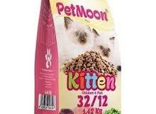 اكل قطط بيتمون