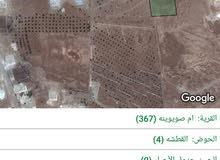 ارض زراعية مساحتها 5 دونم في بلعما