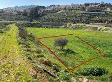قطعة أرض مساحة 1006م2 سكن أ في الحمر الفحيص شارع 12 متر منتظمة