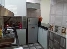 Excellent well furnished apartment for rent