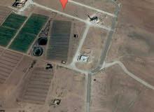 للبيع ارض 500 م في القليب قرب مسجد كريشان