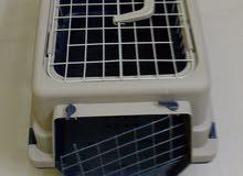 صندوق للقطط