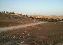 أرض زراعية على طريق إربد الزرقاء للبيع