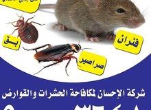 أفضل شركة مكافحة حشرات في الكويت
