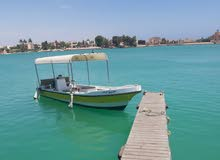 قارب ( بوت ) مع محركين