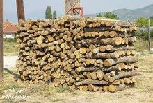 الاستعداد التام لقص جميع الأشجار على منشار بنزين