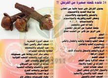 مطلوب حواج / عطار