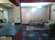 شقة مفروشه للايجار فيصل حسن محمد