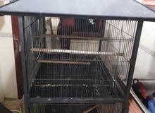 cage big 2 porchion