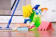 التنظيف الشامل