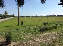 أرض محفظة 2 هكتارات للبيع