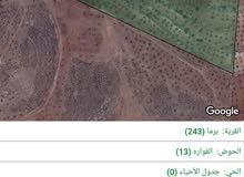 ارض زراعية 37 دونم للبيع
