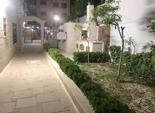 شقه ارضيه مع حديقه شارع الجاردنز للبيع 202 متر