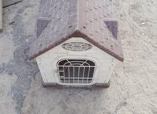 بيت قطة