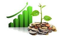 استثمر معنا فى الاستثمار الزراعى الناجح