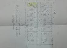 قطعة أرض طابو زراعي أبي الخصيب كوت الحمداني قرب ثانوية تونس مقابيل شارع المحكمة