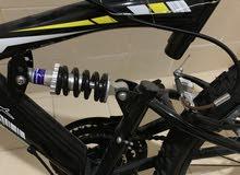 sportex bike