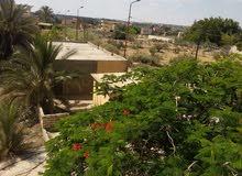 أرض بالشارع الرئيسي للمشير برج العرب القديم