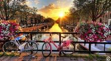 خدمات تأشيرة شنغن هولندا سياحيه